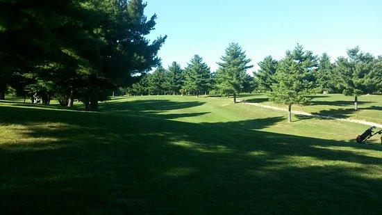 Carrollton, IL: Beautiful  course..