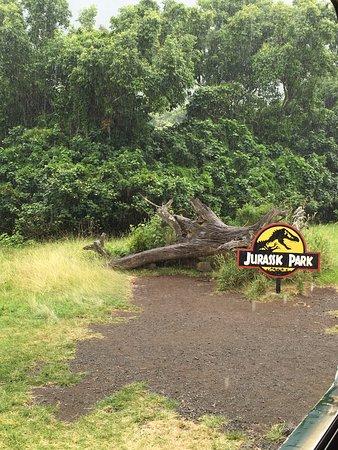 Kaneohe, HI: One of the scenes where Jurassic Park was filmed.
