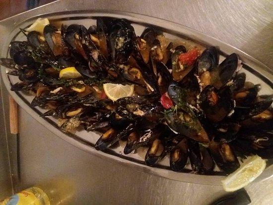 Zaostrog, Hırvatistan: fresh seashells