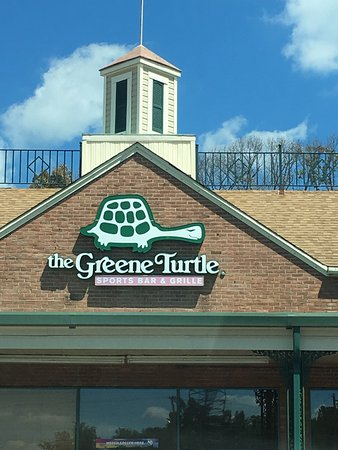Green turtle prince frederick