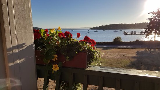 Lopez Island, WA: Now THAT'S how you start a vacation! View from our balcony on second floor.