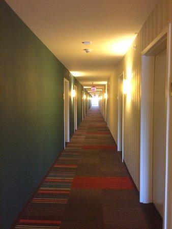 Champaign, IL: 4th floor hallway
