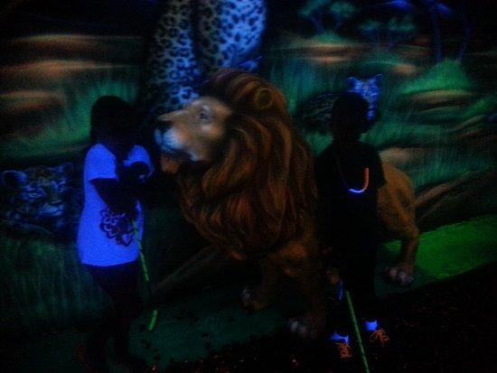 Cortland, NY: indoor glow golf