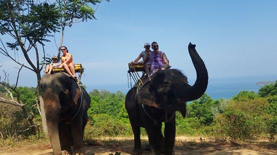 """Ко Чанг"" Сафари: Прогулки на слонах: Great views on elephant back"
