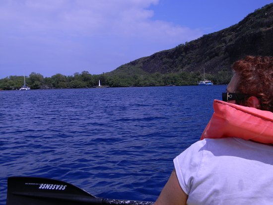 Captain Cook, Hawái: Me kayaking over to the Capt. Cook Monument!