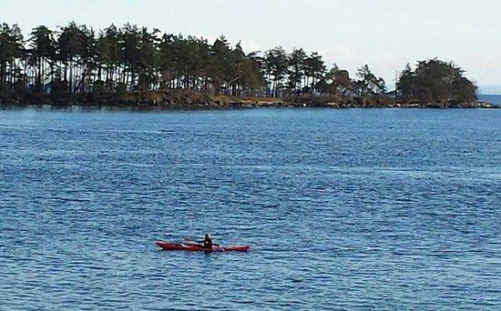 Νησί Gabriola, Καναδάς: BEAUTIFUL changing landscape ...ahhh Drumbeg