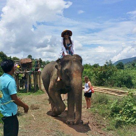 Ban Xieng Lom, ลาว: 象とお散歩