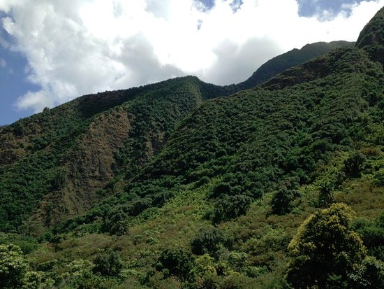 Wailuku, Hawái: Beautiful green lush mountains