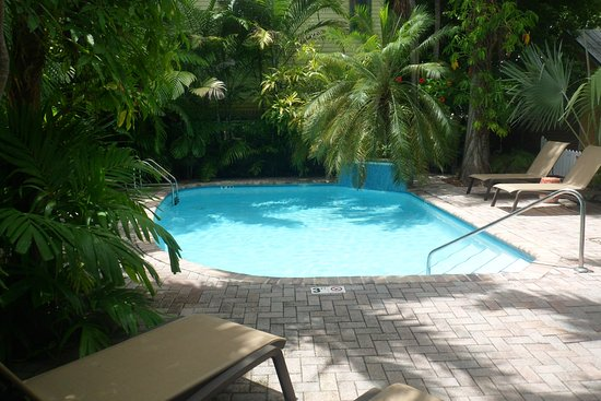 Tropical Inn: Private, clean pool with waterfall in background