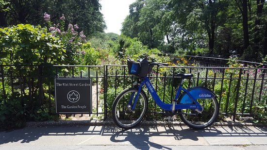 Superior Riverside Park: The 91st Street Garden