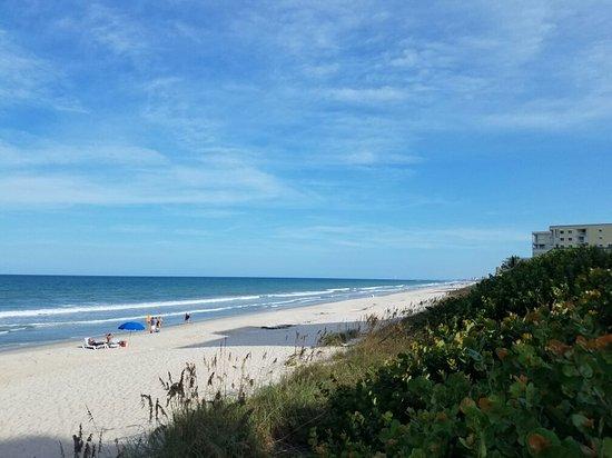 Hilton Melbourne Beach Oceanfront: 20160820_173817_large.jpg
