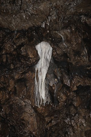 Dunmore Cave: A Calcite Formation