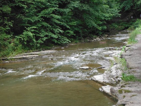 Dansville, NY: Many place along the trails you can dip your toes or walk in the water.