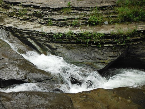 Dansville, NY: Some of the smaller waterfalls are great to be used as slides! Refreshing!