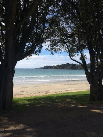 Остров Уаихеке, Новая Зеландия: photo4.jpg