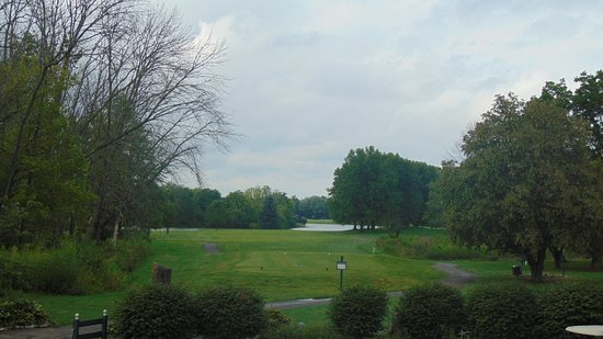 Middletown, OH: Beautiful Greens