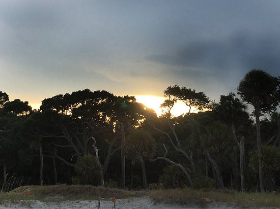 Bilde fra Hunting Island State Park Campground