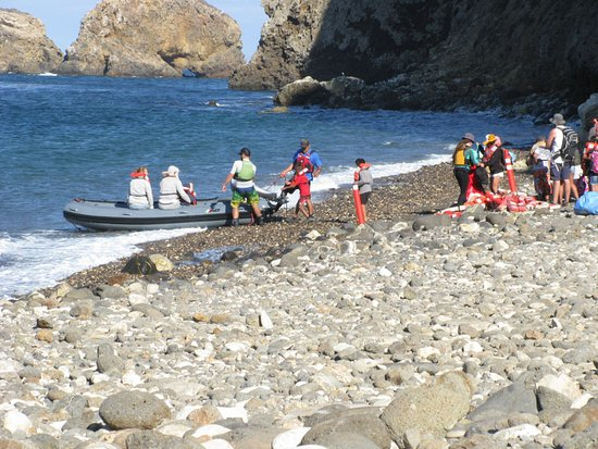 Santa Cruz Island Scorpion Ranch Campground : The pier was damaged and this is how you get from the boat
