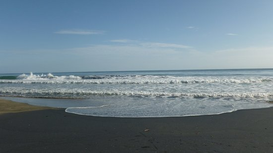 Cocles, Costa Rica: Nice waves!