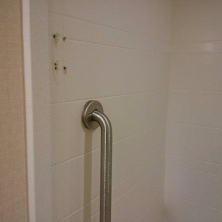 Holiday Inn Express Hotel & Suites Waterloo - St Jacobs: Missing shower door