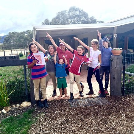 Braidwood, Avustralya: Happy Campers!