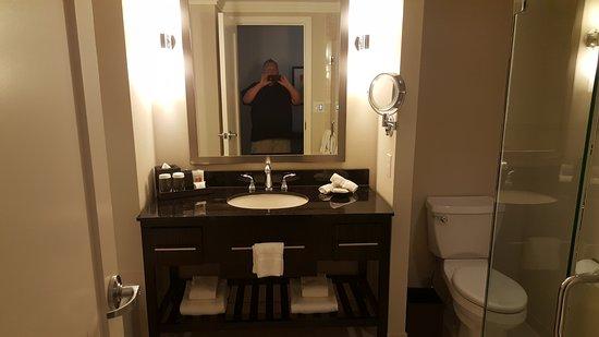 Loews Atlanta Hotel Picture