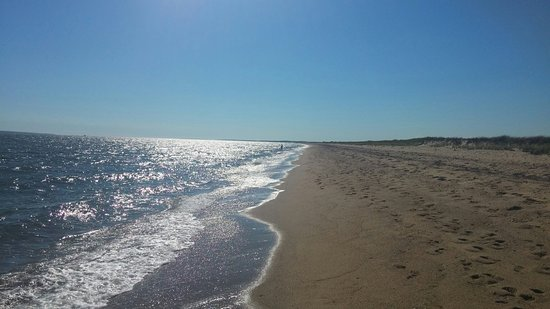 Sandwich, MA: Sandy Neck Beach