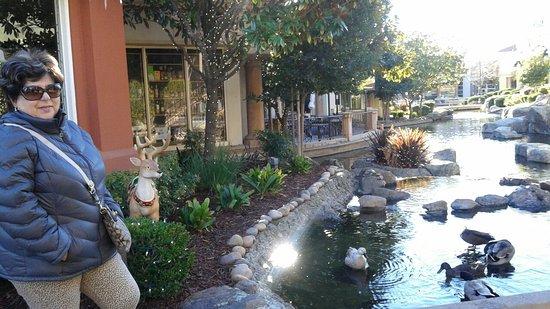 Danville, Kaliforniya: 20151225_150254_large.jpg