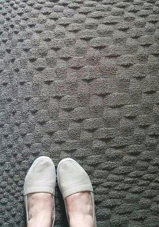 Coraopolis, PA: Cool carpet!