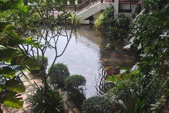 Angkor Palace Resort & Spa: View from restaurant