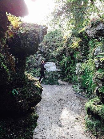 Enniskerry, Ιρλανδία: gardens