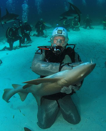 Île de New Providence : Dani taught me how to put a Nurse shark to sleep. Take the shark course.