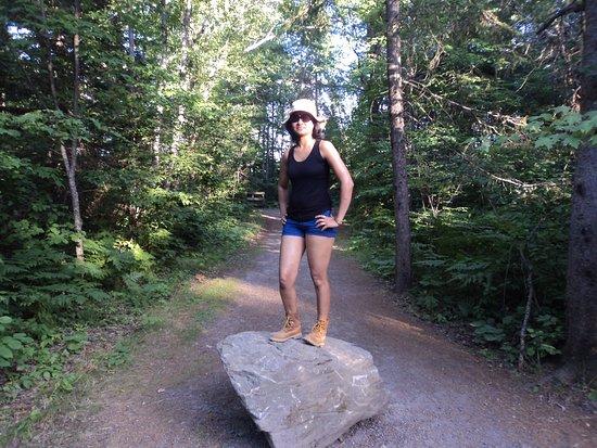 Arrowhead Provincial Park: Arrow head