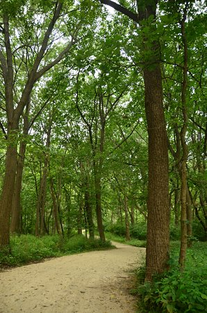 Darien, IL: Peaceful path