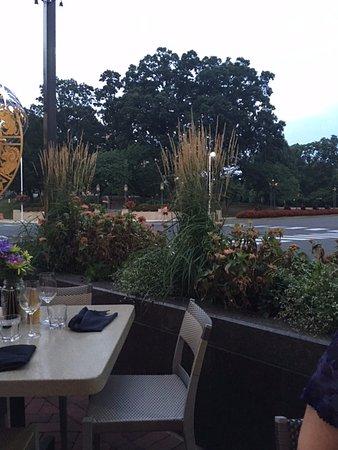 Reston, VA: Our dinner view