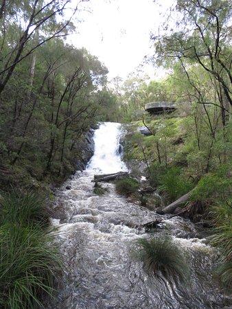 Pemberton, Αυστραλία: Beedelup Falls