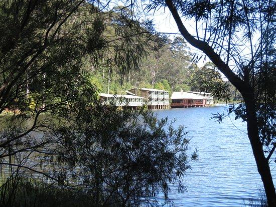Pemberton, Αυστραλία: Karri Valley Resort from the track walk