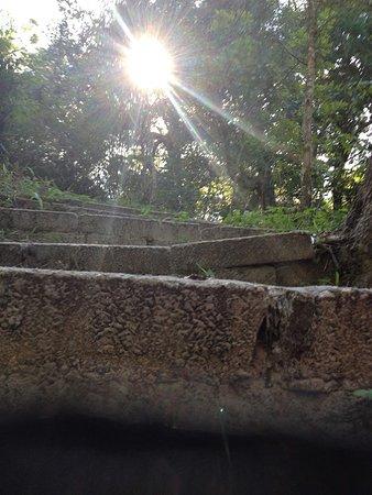 Palatka, Флорида: Stone Steps