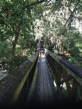 Palatka, Флорида: Suspension bridge