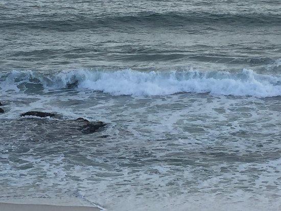 Burns Beach, Australia: photo3.jpg