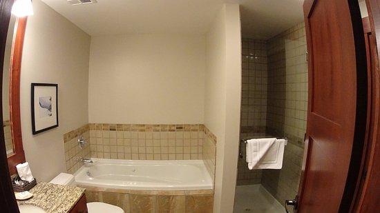 فيرست تراكس لودج - ويسلر: Bathroom