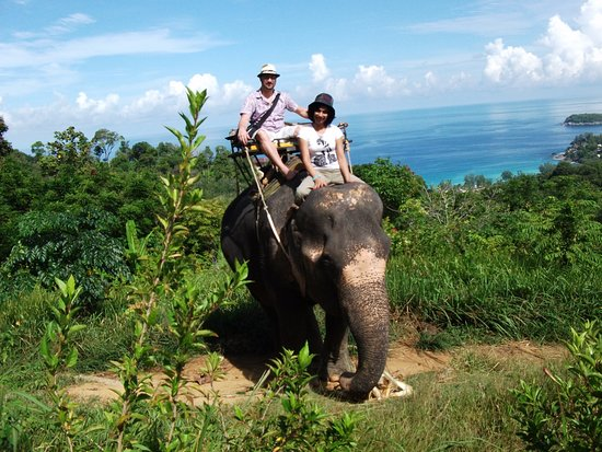 Kok Chang Safari Elephant Trekking: Lovely view as we went.