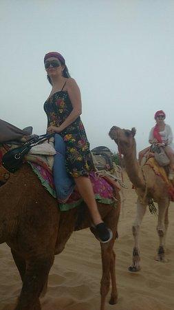 Desert safari Planners: Desert Safari Planner's jaisalmer
