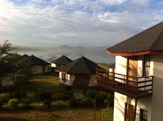 Озеро Элементаита, Кения: view from the room