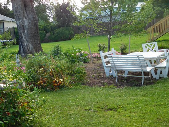 Terre Hill, Pensylwania: Back Yard