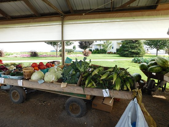 Terre Hill, PA: Farm Stand Nearby