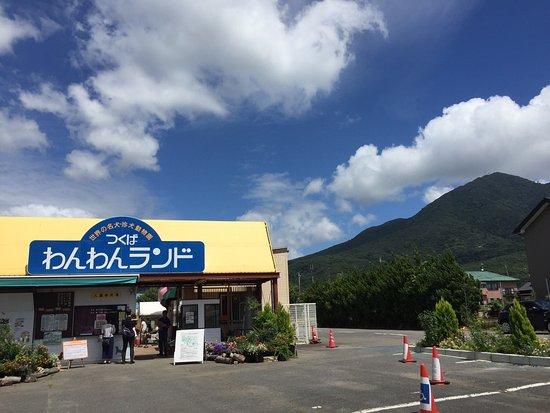 Tsukuba Wanwan Land : photo0.jpg