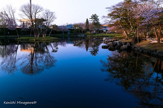Iwamizawa, Japón: 池が綺麗です。