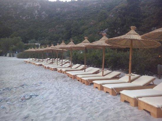 Limnonari Beach: !!!!!!!!!!!!