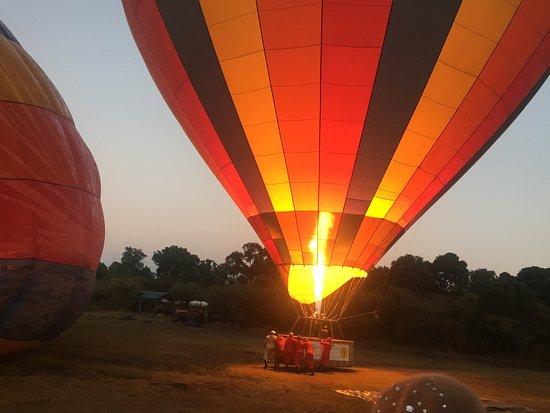 Governors' Balloon Safaris: Hot air ballooning in little governors camp